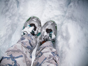 Whistler - Snowshoeing in fresh snow.