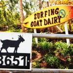 Sign for Surfing Goat Dairy Farm Maui Hawaii