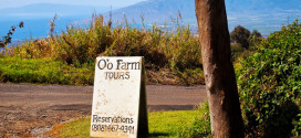 O'o Farm in Upcountry Maui