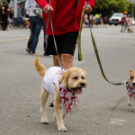 Canada Day in Steveston - Salmon Festival and Parade