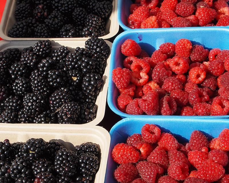 West End Farmers Market - Summer. Organic Blackberries and Rasberries