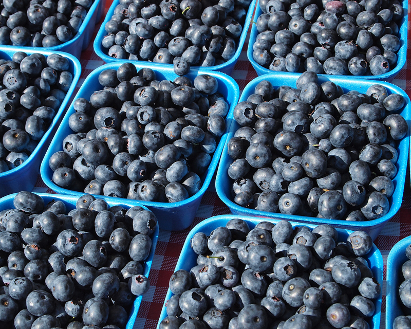 West End Farmers Market - Summer. Organic Blueberries.
