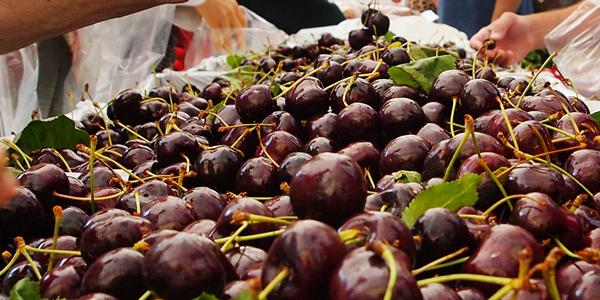 West End Farmers Market - Summer. Certified Organic Cherries from Golden West Farms, Summerland, B.C.