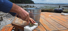 Slow Travel : Taylor Shellfish Farm on Chuckanut Drive