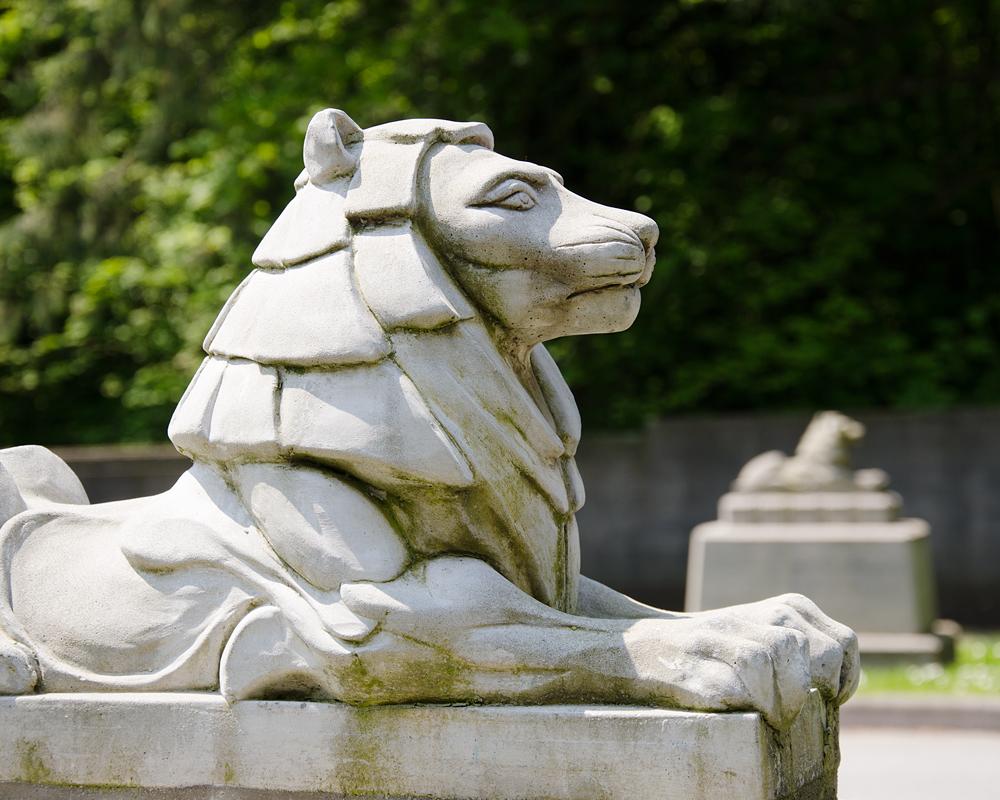 Miniature Lions in Stanley Park