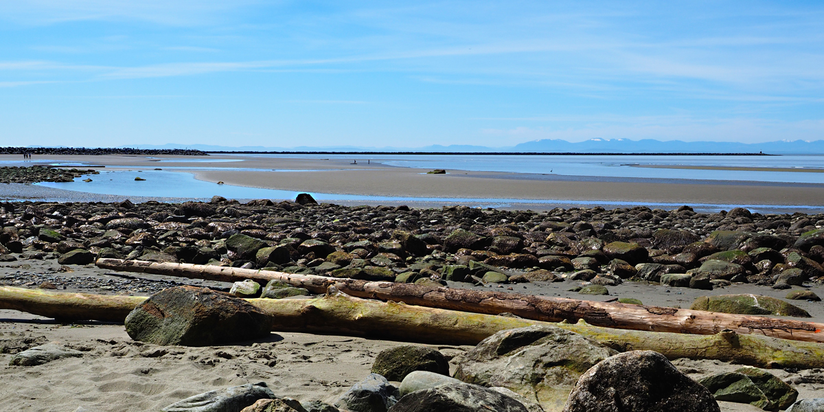 Wreck Beach is on the wild pacific coast of Vancouver. BC.