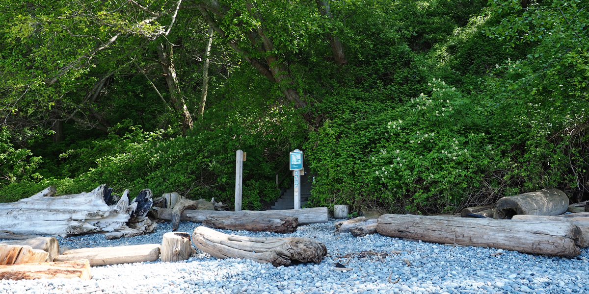 Trail 4. Wreck Beach, Pacific Spirit Regional Park, Vancouver